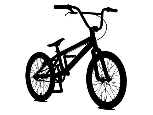 貯金しなきゃと思いながら買った、BMXというか自転車